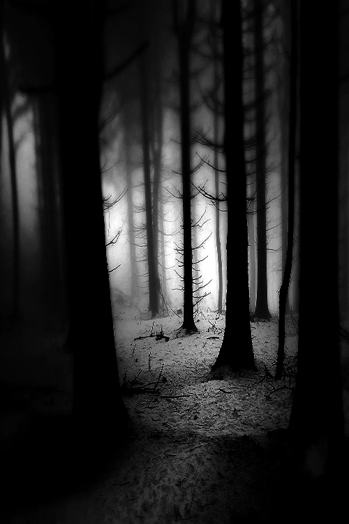 Belles images sombres page 6 - Dessin sombre ...